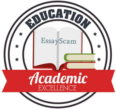 essay on academic excellence guarantees a successful life