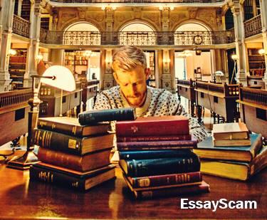 English vocabulary for essay writing