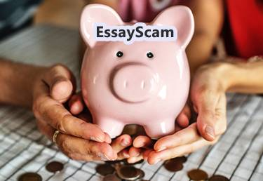 Persuasive Essay Examples For High School Essay Bank Proposal Essay Topic also High School Dropout Essay Essay Banks  Essay Writing Abraham Lincoln Essay Paper