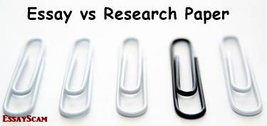 the difference between an essay and a research paper research paper or essay
