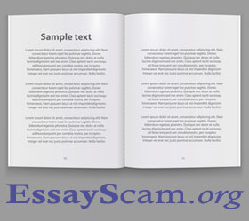 Essay standard font - college counselor essay